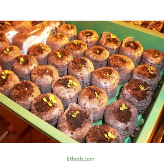 10 أقراص البيتموس المضغوط ( Jiffy Peat Pellets )