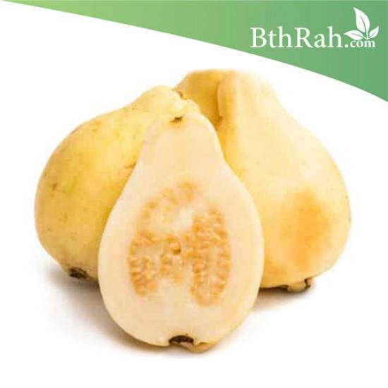 بذور الجوافة الصفراء - Psidium guajava