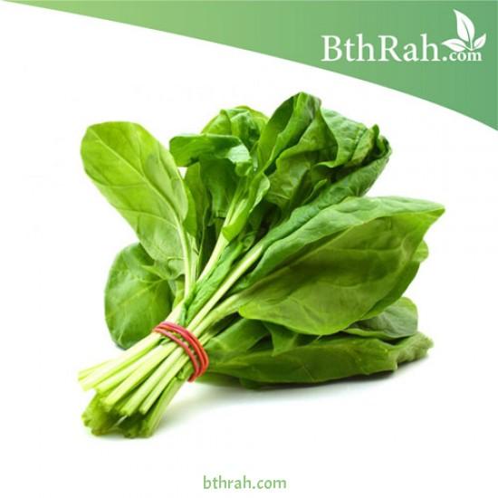 بذور السبانخ - Spinacia oleracea