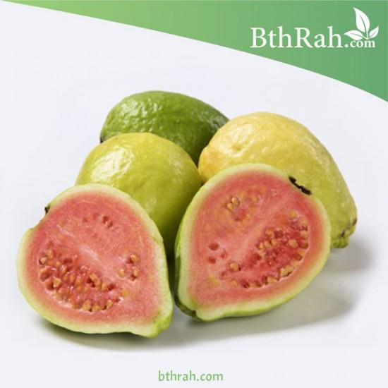 بذور الجوافة الحمراء - Psidium guajava