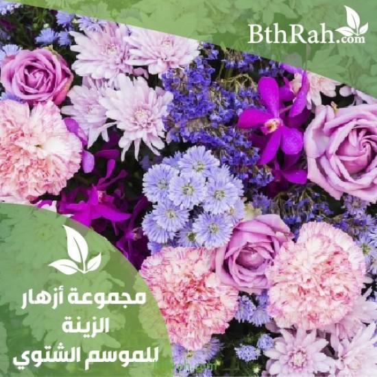 عرض مجموعة نباتات الزينة الشتوية خصم 15%+مراكن هدية