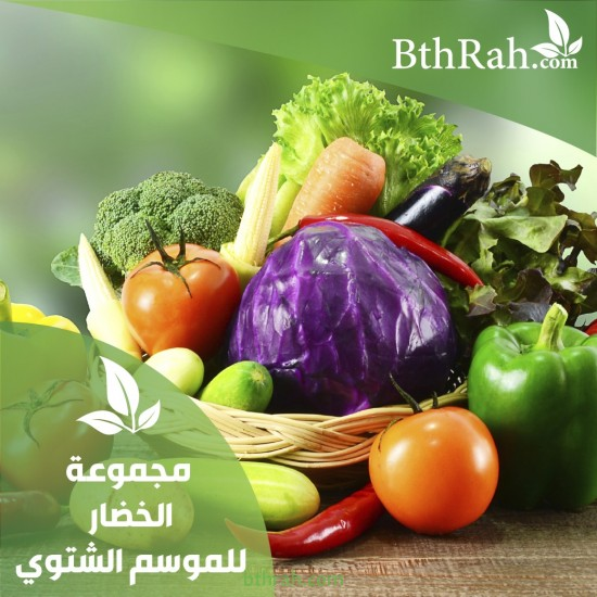 عرض مجموعة نباتات الخضروات الشتوية