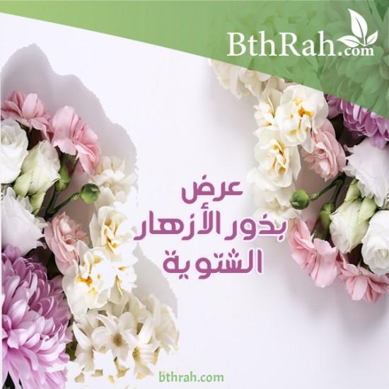 بذور نباتات الزهور الشتوية خصم 15% +أصص هدية
