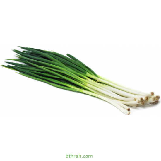 بذور البصل  الأخضر - Allium cepa