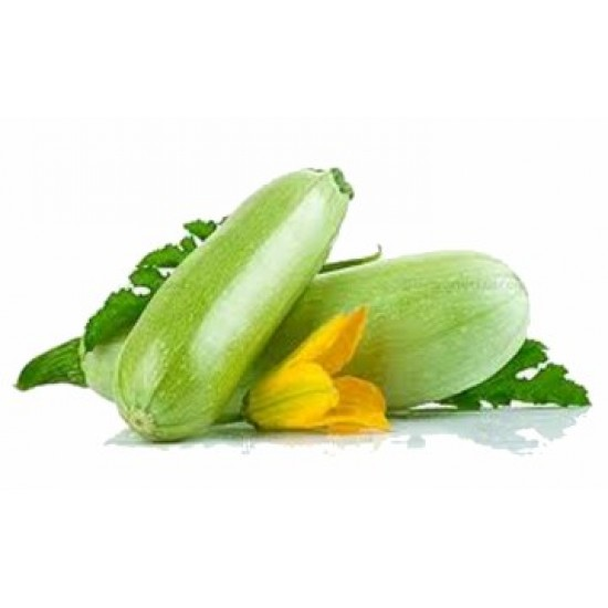 بذور الكوسة(Cucurbita pepo var. cylindrica)