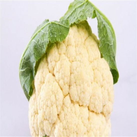 بذور القرنبيط(Cauliflower)