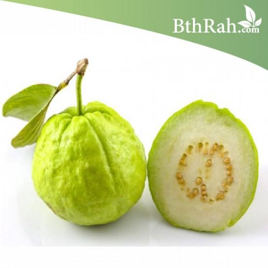 بذور الجوافة ( Psidium guajava )