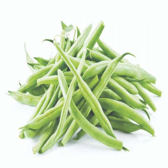 بذور الفاصولياء - Phaseolus